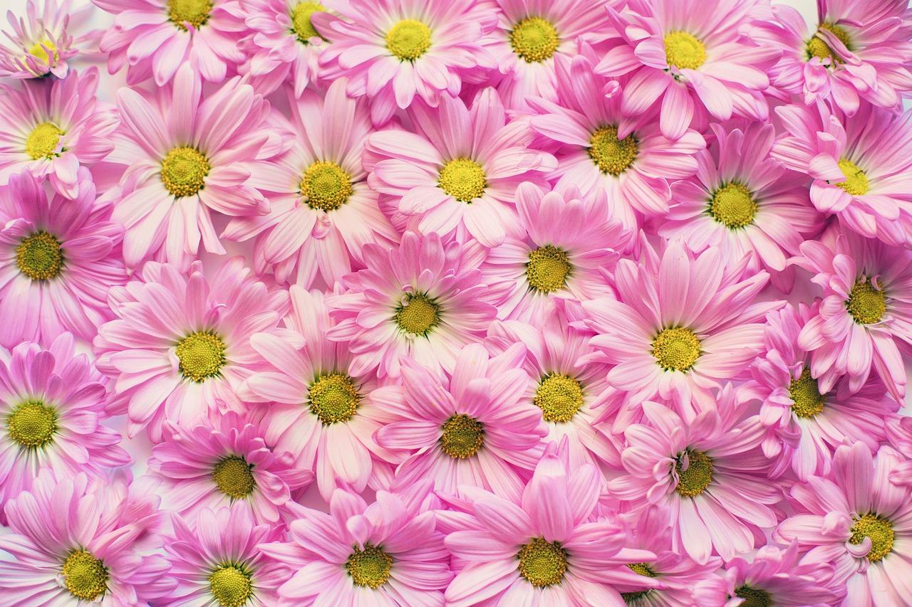 花柄といえばリバティ生地!種類や特徴、人気の理由をご紹介!