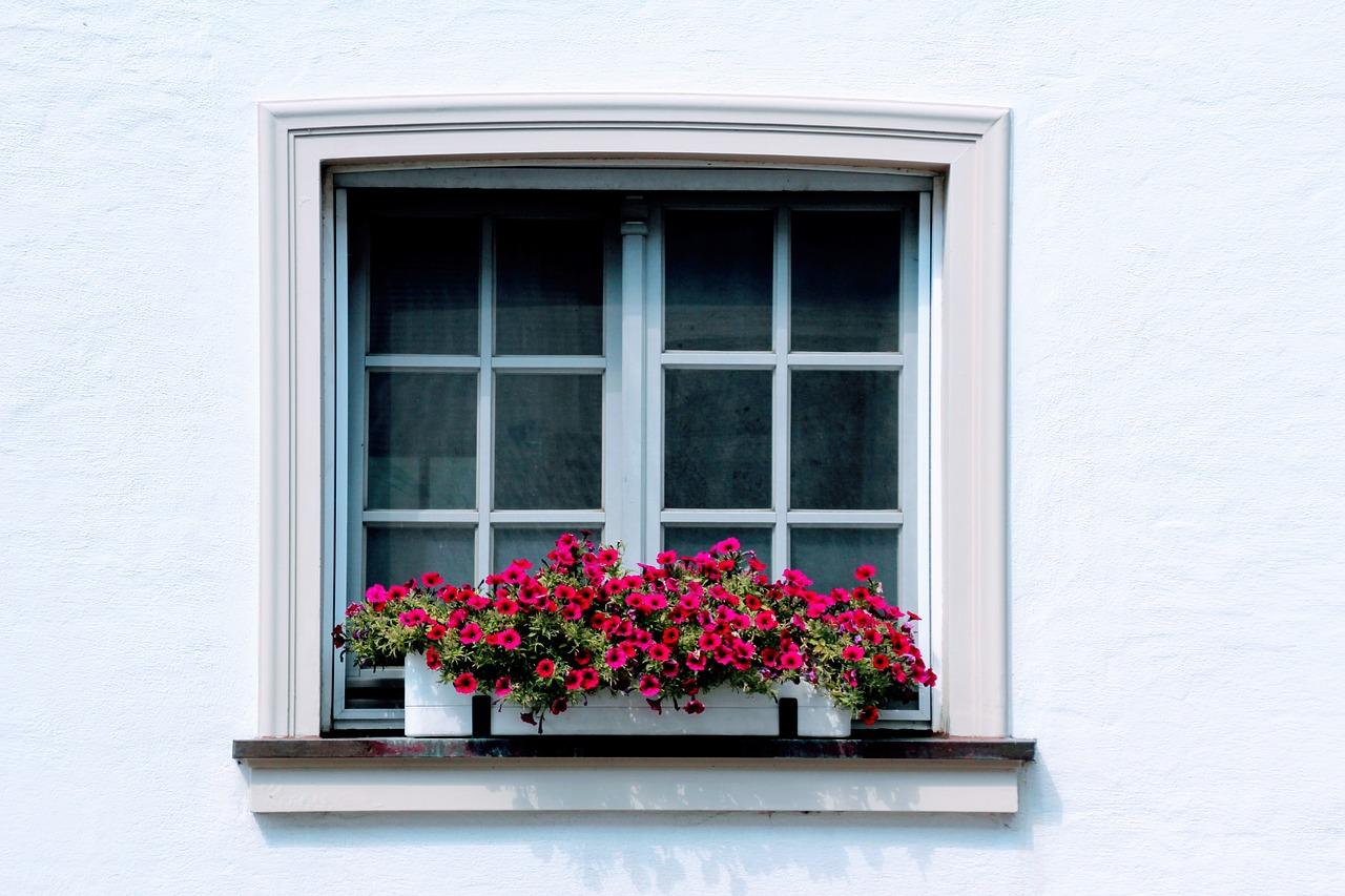 部屋へ侵入!?虫対策には網戸の張り替えや網戸用虫除けで予防!