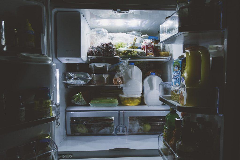 いつの間にかコバエの幼虫が冷蔵庫に!原因と対処法!
