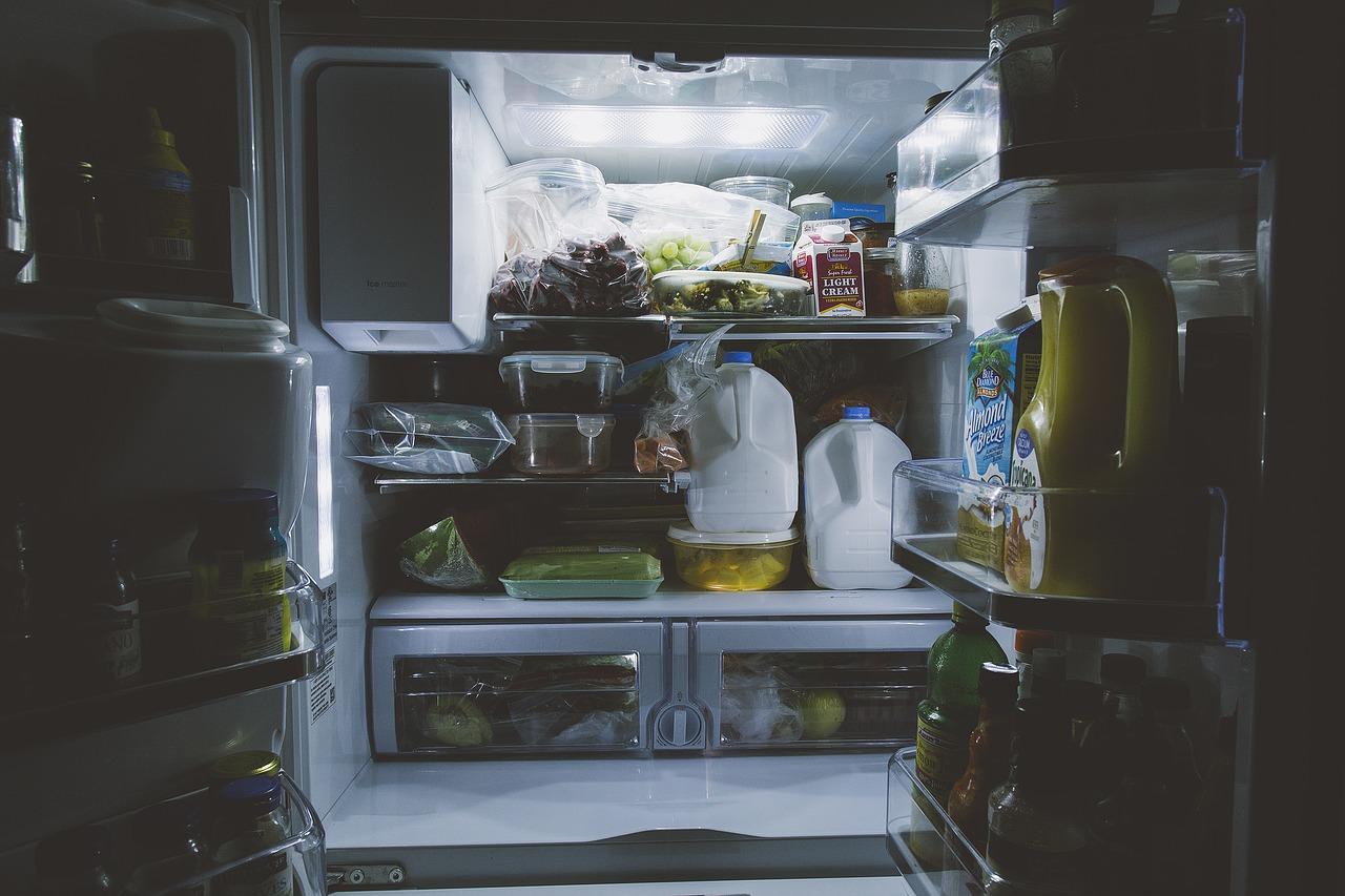 いつの間に?!コバエの幼虫が冷蔵庫内で発生。原因と対処法は?