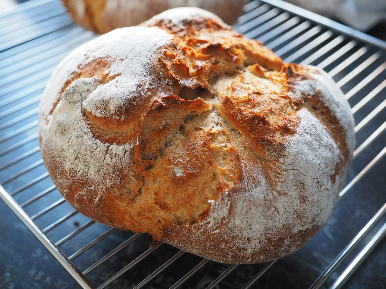 パン作り開始!イーストか酵母で迷ったときは特徴や違いを考えて