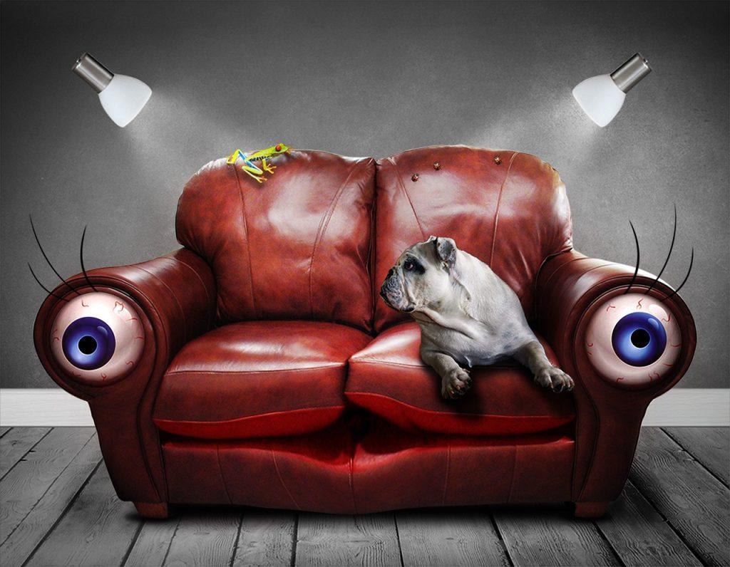 新品の革のソファーの臭いの原因と掃除方法を徹底解説!