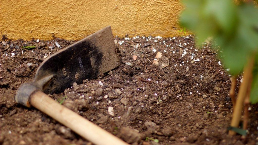 畑に肥料や石灰を撒くことの必要性や巻き方について解説